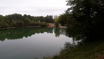 Fishery Maintenance - Carp Fishery in France